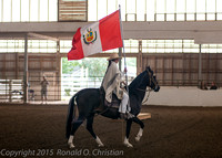 Horse show Peruvian McMinnville 082015 - Sunday